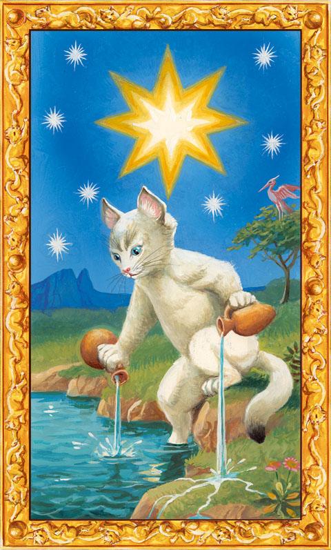 「星」の白猫タロット占い