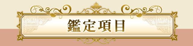 鏡リュウジ人生占いの鑑定項目